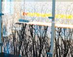 Floral-windowfilms-decorative-films